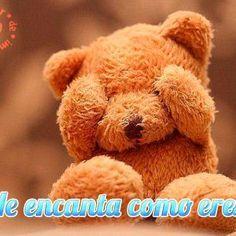 Mejores 326 Imagenes De Ositos De Amor En Pinterest Cute Teddy