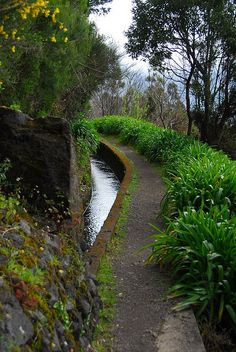 Waterways of Madeira Island, Canary Islands, Portugal