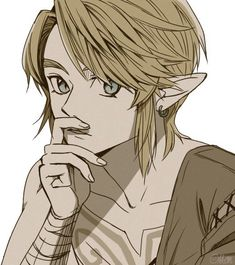 Link_Twilingt princess