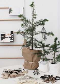 little tree - organic, simple, stylish, effective