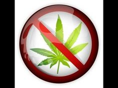 How To Quit Smoking Weed Quitting Marijuana Quitting Weed Click- http://thespottydogg.com/review/quit-smoking-weed/