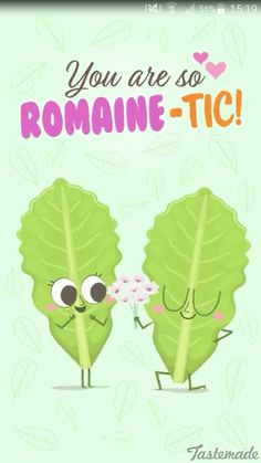 Romaine lettuce food pun