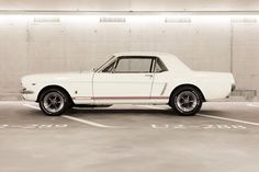 Spectacular Classic & Modern Mustangs Daily -----> http://hot-cars.org/