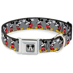 Buckle-Down DYBT Mickey Mouse w/Glasses Full Color Gray Dog Collar *** Want additional info? Click on the image. (This is an affiliate link) #CollarsHarnessesandLeashes