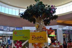 Brandon Fla. mall debuts new Sesame Street Safari of Fun play area - Orlando Attractions Magazine