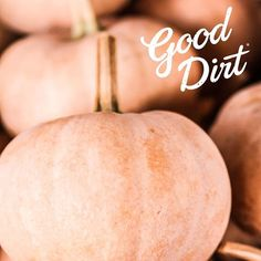 Happy Fall Y'all! - from all of us at GOOD DIRT!  We'd love for you to grow with us this season. Visit our website to learn more about conditioning your soil prior to planting to ensure excellent drainage and added air space for optimum root growth.  #GoodDirt #DigGoodDirt #GrownInGoodDirt #Fall #Autumn #FirstDayOfFall #Pumpkin #PumpkinSpice #SoilConditioner #GardenCenter #Landscaper #Permaculture #Microfarming #CityGardener #UrbanJungle #UrbanGardeners #CityFarm #Homesteading #Instagood…