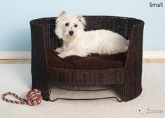 Perfect for an afternoon snooze. -jack needs one of these, he always wants to get on the couch & bed with us