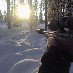#vinterjakt #jakt #sånndetskalvære #nordichunter #elgjakt #norgesjakt #norgesjegere #swe_hunters #hauskenlyddemper #hausken by martebakka