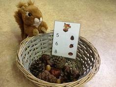 Zählen Sie für den Winterschlaf von Fluffy Squirrel - New Ideas