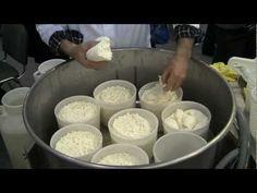 Производство сыра Моцарелла Мастер-класс - YouTube