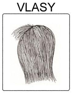 Části těla - vlasy