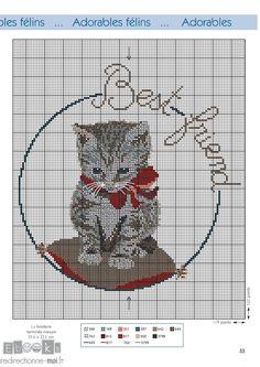 Cat Cross Stitches, Funny Cross Stitch Patterns, Cross Stitch Needles, Cross Stitch Designs, Cross Stitching, Cross Stitch Embroidery, Cross Stitch Cards, Cross Stitch Animals, Cross Stitch Kits