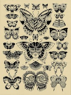 Butterfly Chart | by Kyler Martz