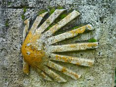 The iconic symbol of the camino: The scallop shell