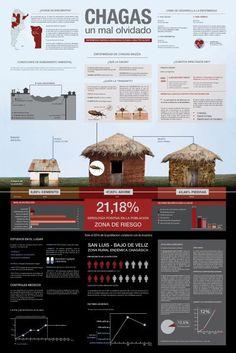 Poster Infográfico