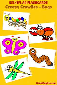 Kids love #spring - soft puddles, rain, BUGS! Use these #ESL A4 flashcards to teach your class what certain bugs are called in #English.