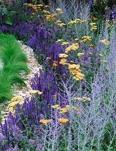 Salvia, Achillea and Perovskia. 'An Uprising of Kindness', Silver medal winner, RHS Hampton Court Flower Show 2010