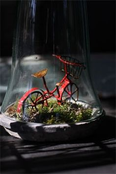 Red Bicycle under glass