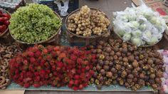 Armonía, Salud y Vida: Frutas medicinales exóticas (parte I)