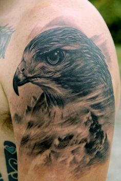 One popular symbolic animal tattoo is the hawk. The hawk has been mentioned throughout history by a variety of cultures throughout the world. Hawk tattoos are sported by men, however, a few women may consider the hawk tattoo. Wolf Tattoos, Care Bear Tattoos, Eagle Tattoos, Head Tattoos, Celtic Tattoos, Animal Tattoos, Body Art Tattoos, Tatoos, Horse Tattoos