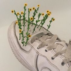 My shoes are so dirty they sprouted flowers last night