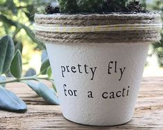 """2"""" Pretty Fly for a Cacti » Plant Indoor and Outdoor Pot or Planter"""
