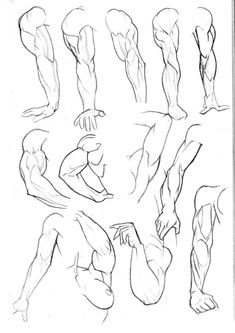 Sketchbook: Arms Pg3 by Bambs79 on deviantART #hands #man #armsv #brazos #manos #hombre