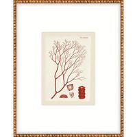 P-5822E Red Coral Back Hallway, easternmost wall, series of four,  236.25 each, retail:  350.00