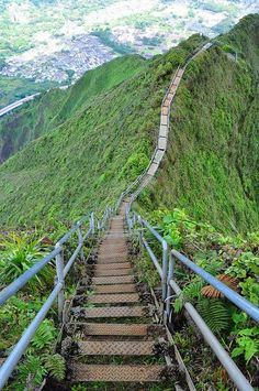 Haiku Stairs 4,000 ties of a steel stair case. It isn't the most difficult hike but the amazing views and sheer drop offs make it the most memorable.