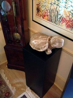 Contrasting Artwork with Art #Pedestals to Produce an Eye-Catching Display