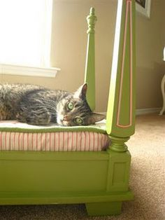 old table turned adorable pet bed