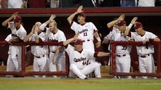 Google Image Result for http://oncampussports.com/wp-content/uploads/2012/06/south_carolina_fear_the_fish.jpg