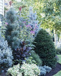tree and shrub garden for corner of house