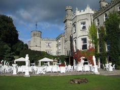 Cabra Castle Hotel in Kingscourt, Co Cavan, Ireland. Oscar, the Irish Wolfhound, is the property's security guard :)