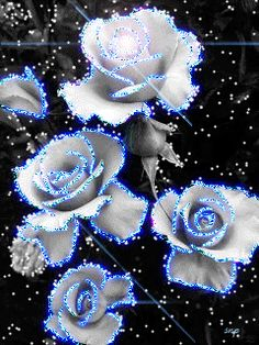 Beautiful flowers for a special friend who make my life sparkle! Beautiful Flowers Images, Beautiful Gif, Flower Images, Flower Pictures, Beautiful Roses, Neon Flowers, Flowers Gif, Glitter Flowers, Pretty Flowers