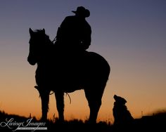 At sunrise, a cowboy in northeastern Wyoming looks down at his loyal border collie.