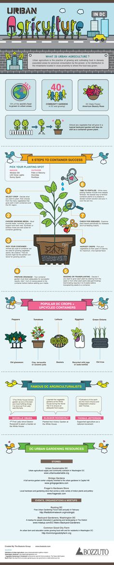 Urban Agriculture in DC Infographic shares some facts of the movements (lead in part by Michelle Obama) and getting started tips for your own balcony or rooftop garden. Urban Garden Design, Garden Landscape Design, Landscaping Design, Garden Landscaping, Urban Agriculture, Urban Farming, Agriculture Facts, Organic Gardening, Gardening Tips