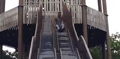 It's been a while since we did a Gif dump .Gifs) - The Laughter Ward Epic Fail Pictures, Best Funny Pictures, Random Pictures, Funny Fails, Funny Jokes, Hilarious, It's Funny, Funny Shit, Beste Gif