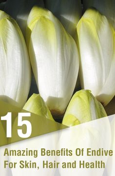 15 Amazing Benefits Of Endive For Skin, Hair and Health