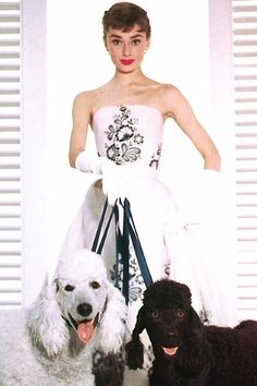 "Audrey Hepburn, promotional photo of ""Sabrina"", 1954"