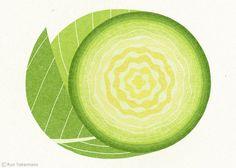 Ryo Takemasa : Cabbage