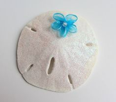 Sand Dollar Ornament with Glitter and Turquoise Bow by CereusArt, $7.00
