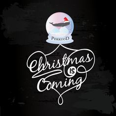 Christmas is coming! #Christmas #Pekkuod  http://www.pekkuod.it/pub/index
