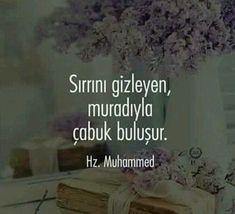 Hazrat Muhammad (s.v) lyrics