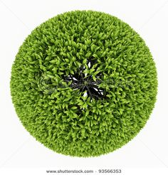 Find Top View Green Round Tree Isolated stock images in HD and millions of other royalty-free stock photos, illustrations and vectors in the Shutterstock collection. Human Tree, Trees Top View, Plane Tree, Photoshop Rendering, Door Design Interior, Interior Plants, Tree Silhouette, Tree Tops, Photoshop Tutorial