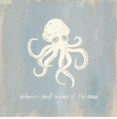 Imperial Octopus Stampa artistica