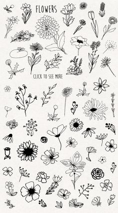 f l o w e r s- flores flowers tatuajes tatuajes en papel delicados de Bullet Journal Art, Bullet Journal Ideas Pages, Bullet Journal Inspiration, Flower Sketches, Art Sketches, Simple Sketches, Doodle Drawings, Tattoo Drawings, Doodle Tattoo