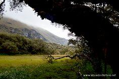 Andean Region of Ecuador - Carchi