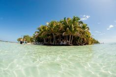 http://pin.sanctuarybelize.com   Come take a swim on our flawless 6 acre private island, Sanctuary Caye!