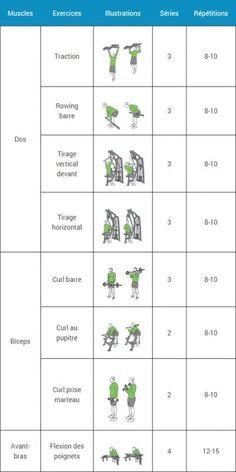 Programme de tonification de 4 exercices pour avoir des
